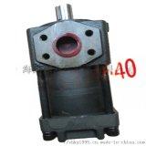 供应NB4-G63F直齿共轭齿轮泵