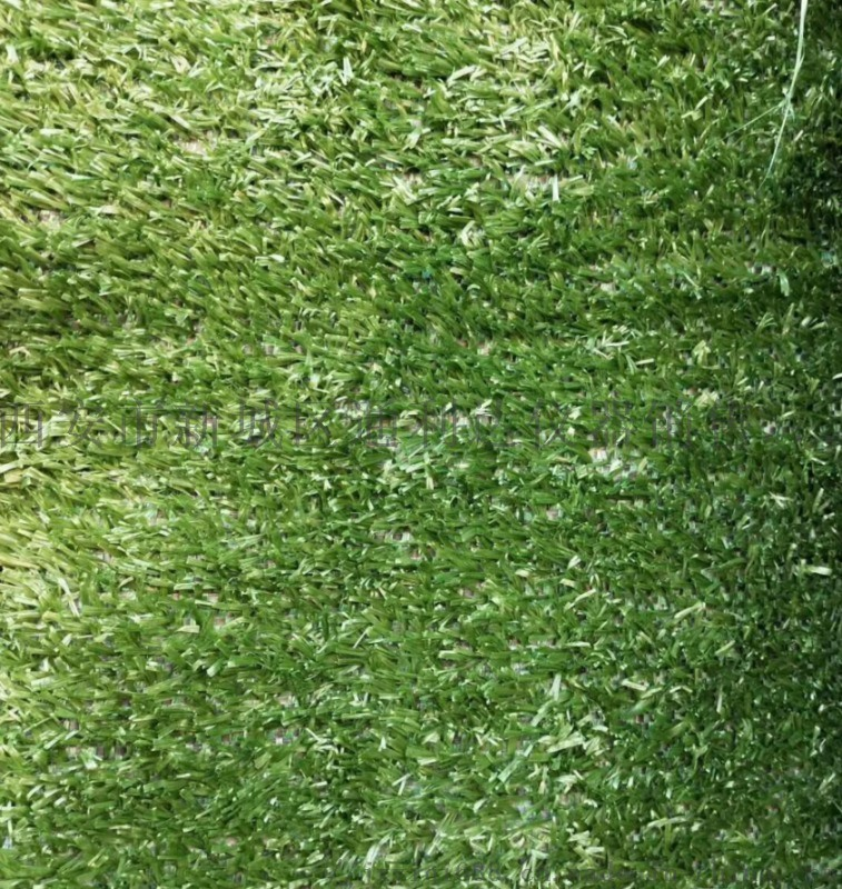 西安哪里有 人造草坪咨询137,72120237