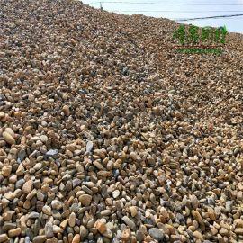 水处理用鹅卵石 铺路用鹅卵石  天然河冲石