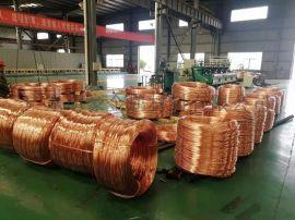 导电 电极T2紫铜线/红铜丝