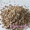 黄金麦饭石 多肉植物介质用黄金麦饭石 3-5mm