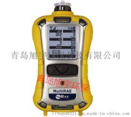 美国华瑞PGM-6208 多气体检测仪