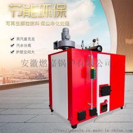 500kg生物质蒸汽发生器酿酒洗涤食用菌