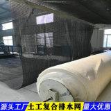 5mm土工复合排水网-陕西价格
