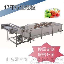 多功能气泡臭氧蔬菜清洗机 百合气泡清洗机
