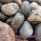 廠家供應園林鋪路鵝卵石 變壓器鵝卵石 五彩河卵石