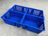 優質塑料雞苗箱雛雞週轉箱雛雞運輸盒子