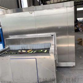 黄桃块速冻生产流水线 低温速冻单冻机