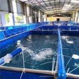 大型户外高密度帆布鱼池养鱼池定制各种尺寸