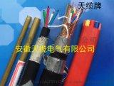 8B (2×4P)×1.0遮罩數位電纜選天纜電氣