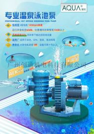 游泳池循环水处理设备 爱克ALK泳池过滤水泵