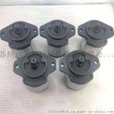 AZPF-11-008RCB20MB無泄漏齒輪泵0510415012