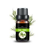 茶树油茶树精油互叶白千层油