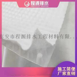 今日新闻//山东虹吸复合排水板直供