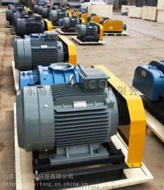 SR-T50罗茨真空泵稳定性好山东**节能厂家供应