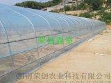 南阳温室大棚建造 温室大棚设计 生态温室餐厅大棚