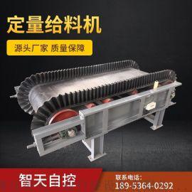 专业生产皮带秤 皮带喂料机