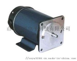 C48-4-15A5-ZD 大功率直流电机