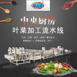 中央厨房全套设备叶菜自动切割清洗流水线