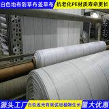 白色防草布河南生產工廠