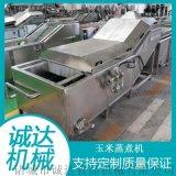 玉米蒸煮設備,玉米蒸煮漂燙機,鮮食玉米蒸煮機