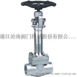 DZ61H低温锻钢闸阀厂家