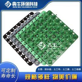 广东省hdpe屋顶种植蓄排水板