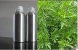 专业厂家 印蒿油 植物精油 Davana oil