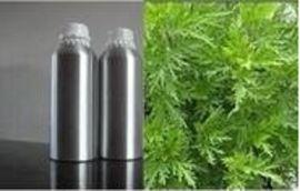 專業廠家 印蒿油 植物精油 Davana oil
