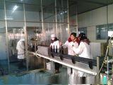 年產500噸葡萄酒生產線設備 整套紅酒釀酒設備 幹紅葡萄酒加工設備 項目預算