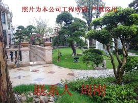 苏州私家别墅庭院绿化苗木、别墅花园绿化设计、私家花园绿化景观工程