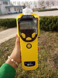 VOC檢測儀哪裏買 進口華瑞VOC氣體檢測儀供應