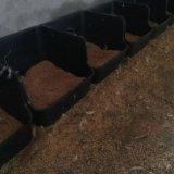 福建塑料黑色鸭产蛋窝 优质黑色鸭产蛋箱