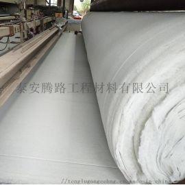 厂家直销定制土工布无纺长丝短丝抗老化耐酸碱土工布