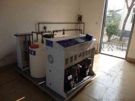 电解食盐消毒设备,自动次氯酸钠发生器