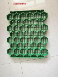 玖和新塑料植草格厂家