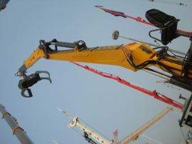 抓木机 ,抓木吊机LSQ090,非标定制液压抓木机