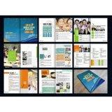 标志、包装、画册、海报、网页、商业空间品牌专业设计