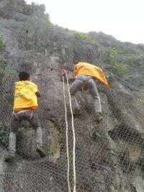 厂家供应攀枝花镀锌护坡防护网¥镀锌护坡被动防护网