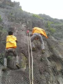 廠家供應攀枝花鍍鋅護坡防護網¥鍍鋅護坡被動防護網