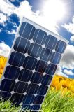 各种型号规格的太阳能电池板 单晶/多晶 价格优惠 效率高
