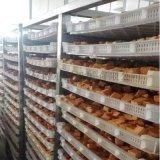 DR-1國內專業食品油炸機 魚豆腐油炸成套設備