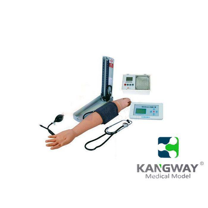 KDF/1084A综合手臂操作模型