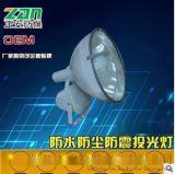 大功率投射燈ZT6900B防水防塵防震投光燈