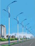 甘肅蘭州路燈廠家市電LED路燈定製