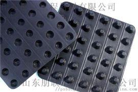 网状排水板/塑料排水板/复合排水板厂家