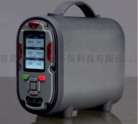 废水厌氧发酵沼气监测用便携式沼气成分分析仪