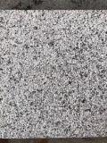 福建芝麻灰石材火烧面地铺石G655芝麻灰环境石材