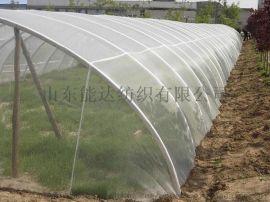蔬菜大棚花卉专用防虫网厂家直销