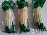 鮮食玉米全自動包裝機,粘玉米抽真空包裝機